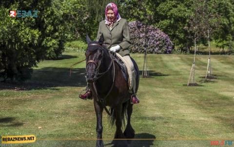 على ظهر حصان.. أول ظهور لملكة بريطانيا منذ