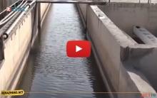 عودة المياه إلى الحسكة وريفها